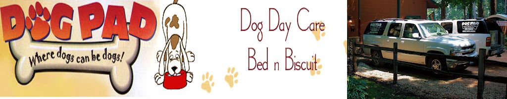 Dog Pad - Professional Dog Boarding and Daycare Specialist